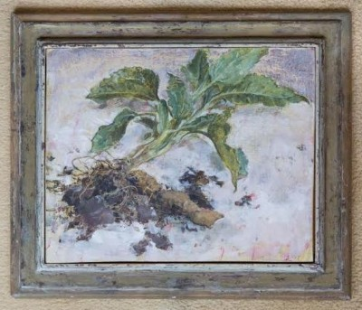 Emily Patrick (b. 1959)Root of Jerusalem Artichoke -