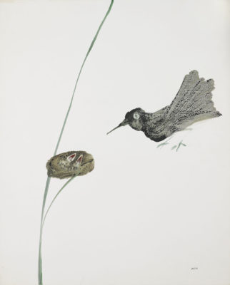 Sir Sidney Nolan, OM AC RA (1917-1992)Bird and Nest -