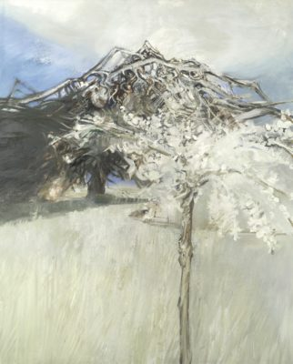 Edward Middleditch RA (1923-1987)Tree in Blossom -