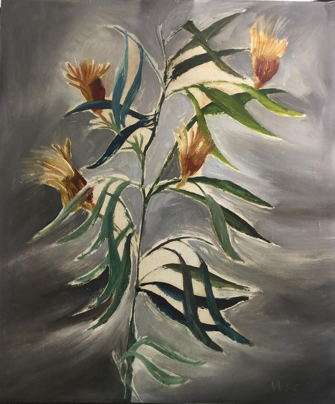 Sir Sidney Nolan, OM AC RA (1917-1992), Plant Study