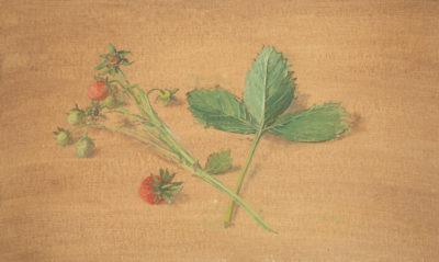 Carolyn Sergeant (1937-2018)Strawberries -